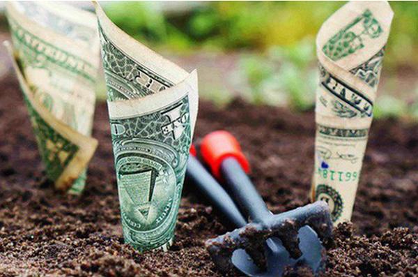 Một chút tiền làm nên đại phú quý, cũng vì chút tiền chẳng còn lại chút gì: Chuyện đời ai cũng nên biết.