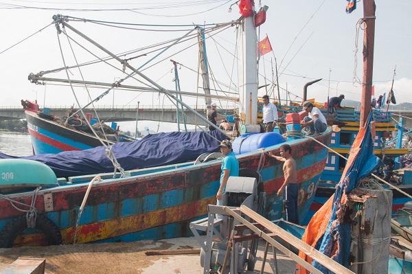 Tiếng kêu vọng về từ những cảng cá miền Trung: Đừng đẩy ngành đánh bắt thủy hải sản vào đường cùng!